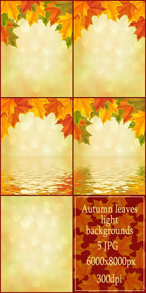 Autumn leaves light backgrounds