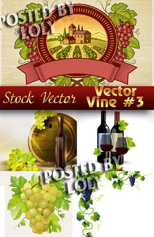 Векторный виноград #3 - Векторный клипарт