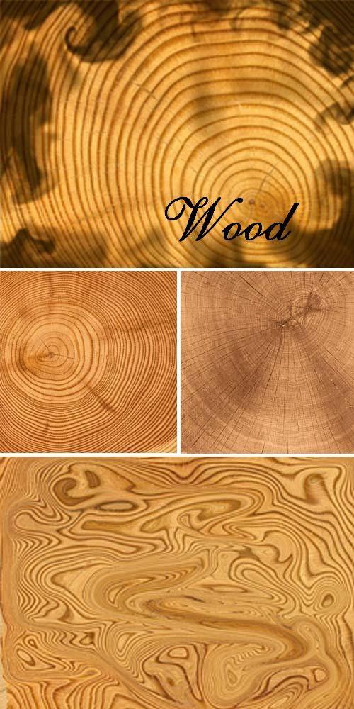 Текстуры поперечных срезов дерева
