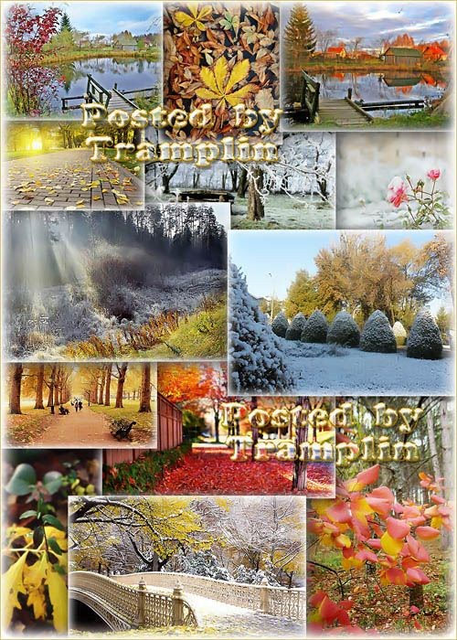 """Красивые осенние пейзажи """"Такой разный Ноябрь"""""""