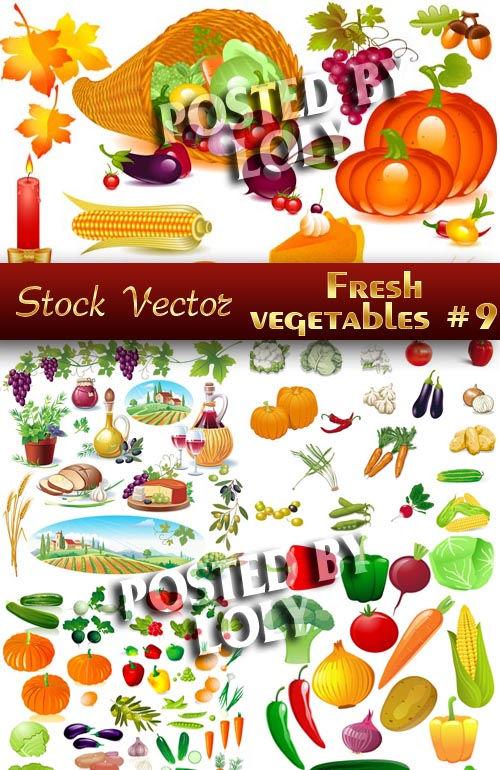 Векторный клипарт Свежие овощи #9