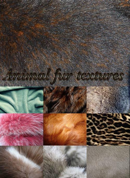 Текстуры меха животных