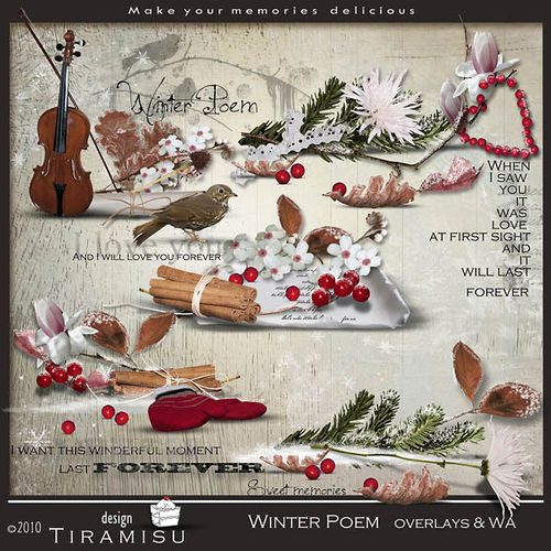 Scrap Winter poem