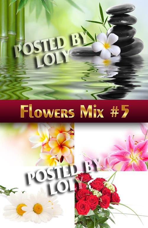 Растровый клипарт Цветочный Микс #5