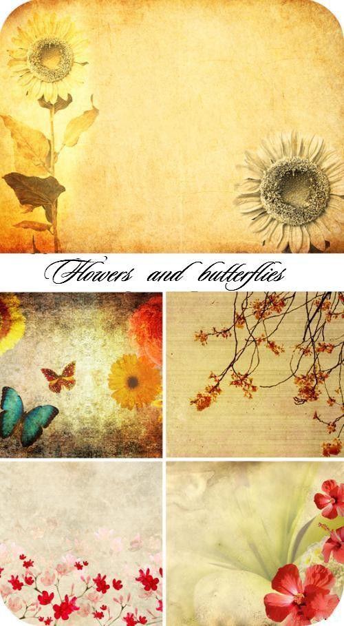 Подсолнухи цветы и бабочки (гранжевые фоны HQ)