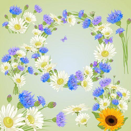 Клипарт - Цветочный белые ромашки прозрачный фон
