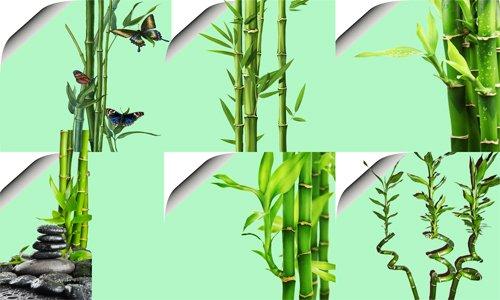 Клипарт '' Бамбук и бабочки''