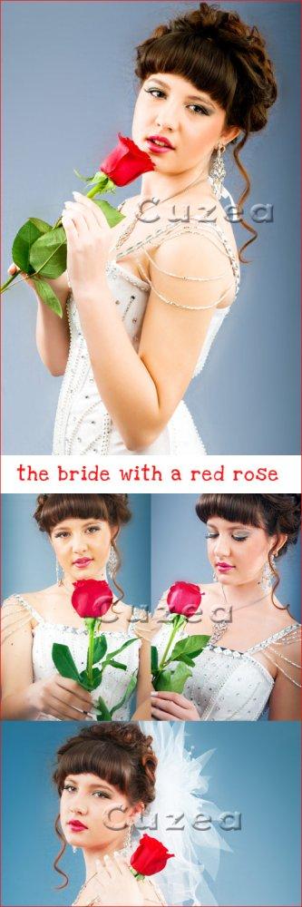 Невеста с красной розой/ Nice bride with red rose - Stock photo