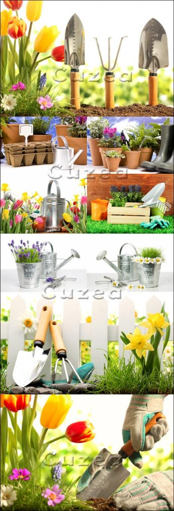 Садоводство/ Gardening - Stock photo