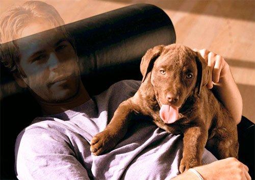 Мужской шаблон - Фото с классной собакой