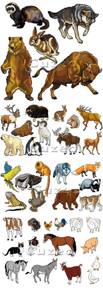 Дикие и домашние животные в векторе/ Wild and house animals in vector