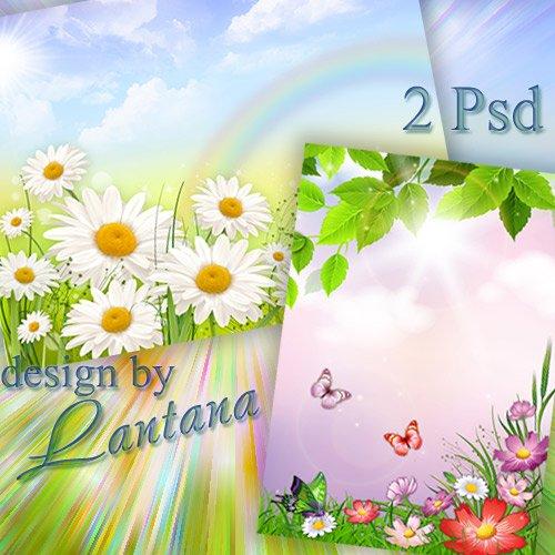 PSD исходники - На поляне много полевых цветов