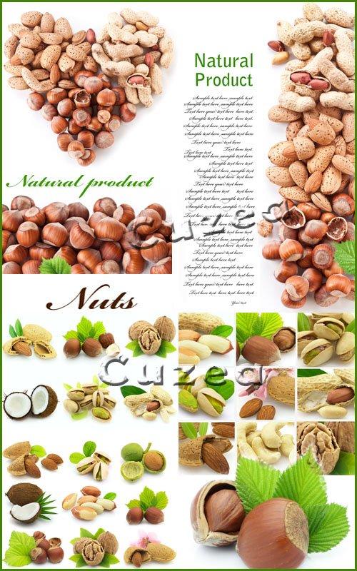 Натур продукт - орехи/ Natural product -  nuts - Stock photo