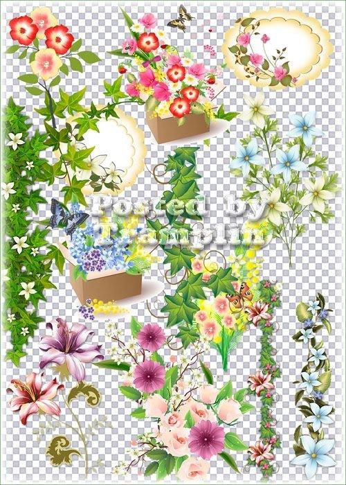 Клипарт на прозрачном фоне – Цветы, Цветочные композиции, букеты, листва