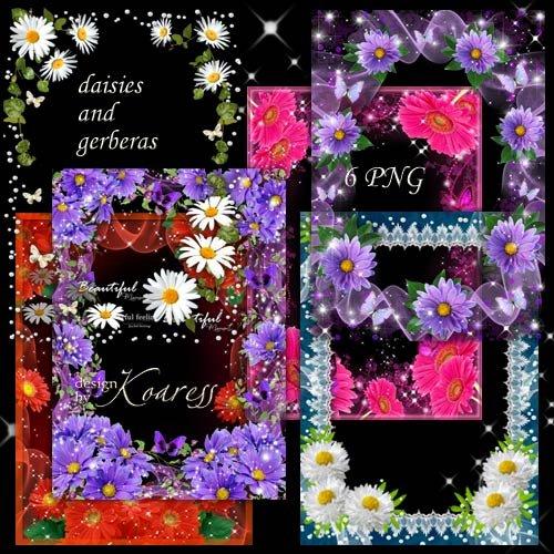 Набор разноцветных цветочных рамок для фото - Герберы и ромашки