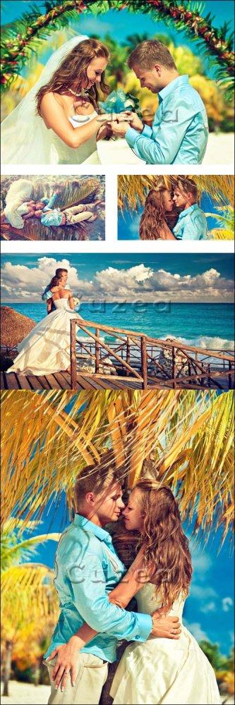 Свадьба на берегу моря/ Wedding on the beach - Stock photo