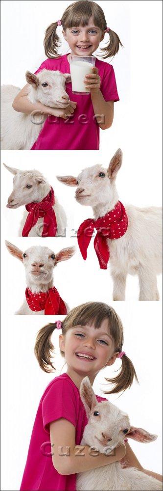 Девочка со стаканом козьего молока и коза на белом фоне/ Little girl drinki ...