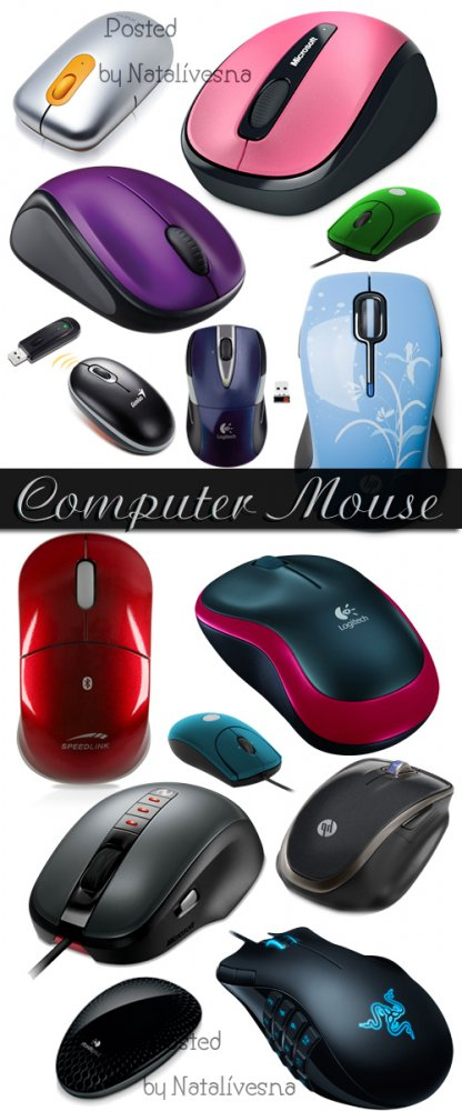 Клипарт в PNG – Компьютерная мышь/ Computer mouse - Clipart in PNG