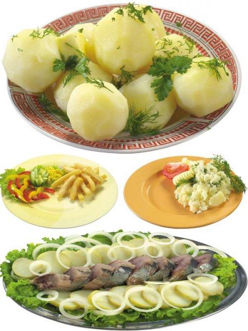 Фотосток: еда - блюда из картофеля