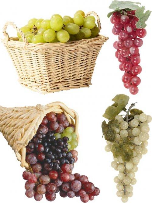 Фотосток: ягоды - виноград
