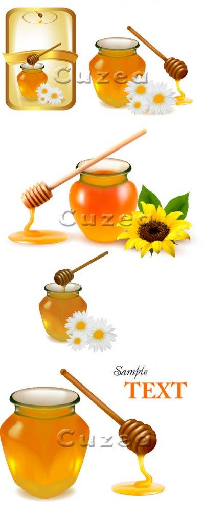Мёд и подсолнух в векторе/ Background with honey - vector stock