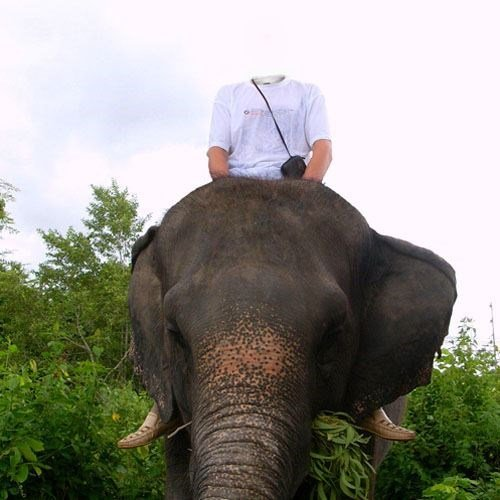Template for photoshop - Excursion to the beautiful elephant