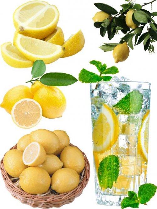 Фотосток: цитрусовые фрукты - Лимон
