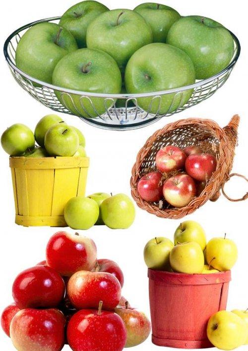 Яблоки - фруктовый фотосток