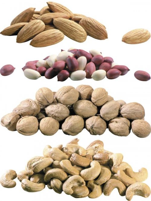 Грецкий орех, арахис, миндаль, фисташки, мускат, фундук, кешью, каштан, жел ...