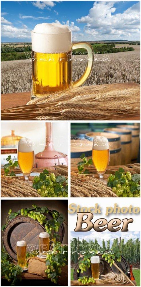 Пиво, бокал с пивом, хмель / Beer, a glass of beer, hops - Raster clipart