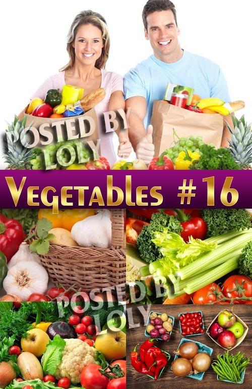 Свежие овощи #16 - Растровый клипарт