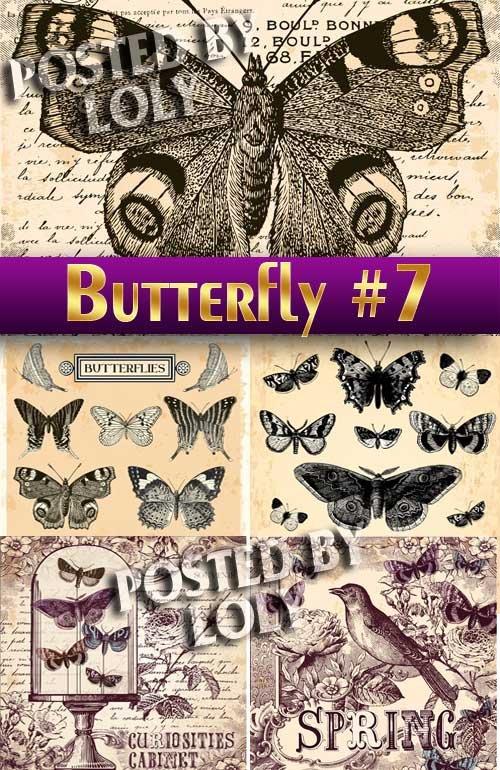 Прекрасные бабочки #7 - Векторный клипарт