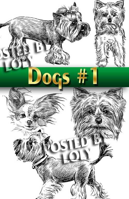 Удивительные собачки #1 - Векторный клипарт
