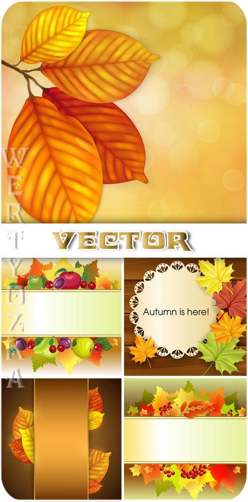 Векторные фоны с осенними листьями и фруктами