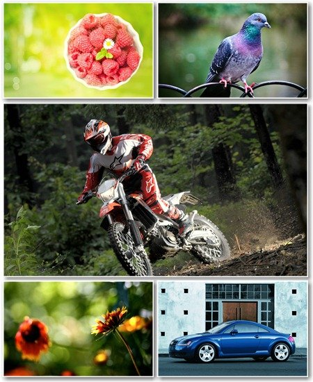 Best HD Wallpapers Pack №1024