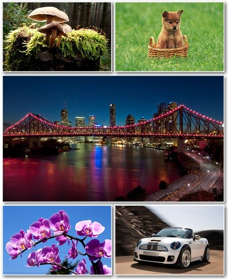 Best HD Wallpapers Pack №1029