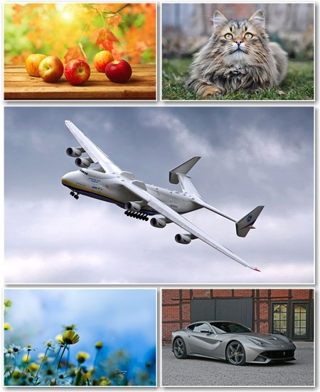 Best HD Wallpapers Pack №1033