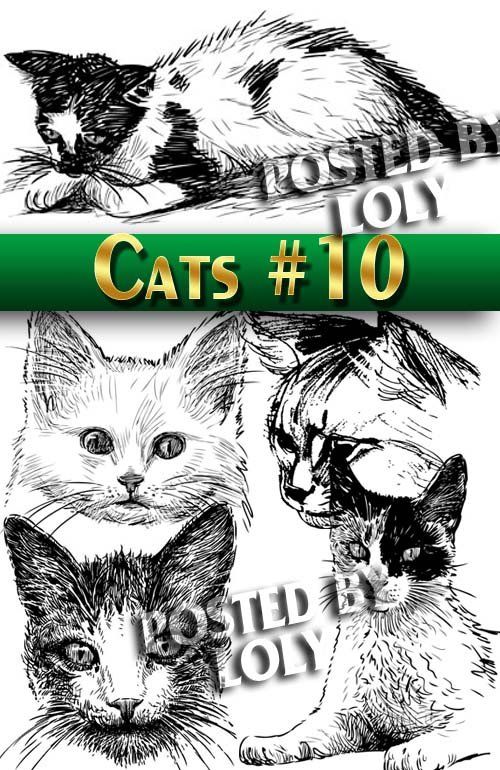 Чудесные котята #10 - Векторный клипарт