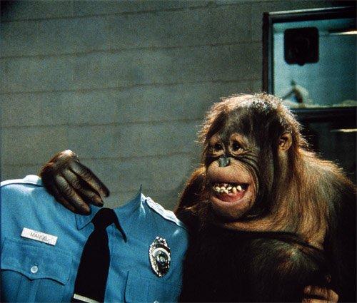 В форме полицейского с орангутангом - шаблон мужской