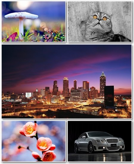 Best HD Wallpapers Pack №1079