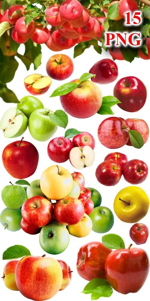 Яблоки - Клипарт на прозрачном фоне / Apples