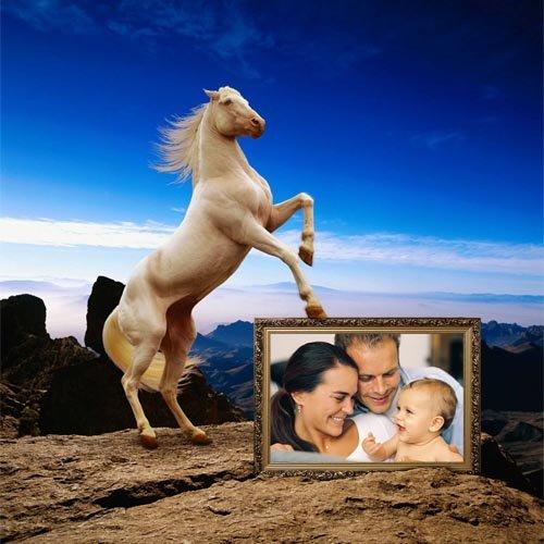 Рамка для фотошопа - Белая лошадка на прекрасном фоне