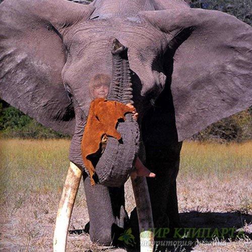 Шаблон детский - Прокатиться на хоботе слона