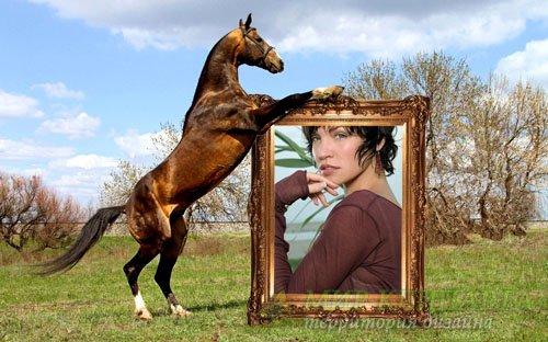 Рамка для фотографии - Вороной держит ваше фото