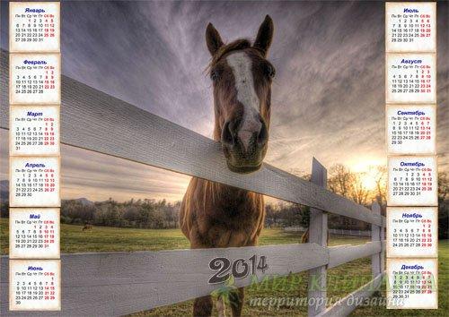 Красивый календарь - Лошадка в загоне