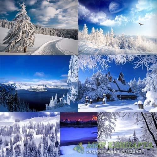 Растровый клипарт - Белая зима