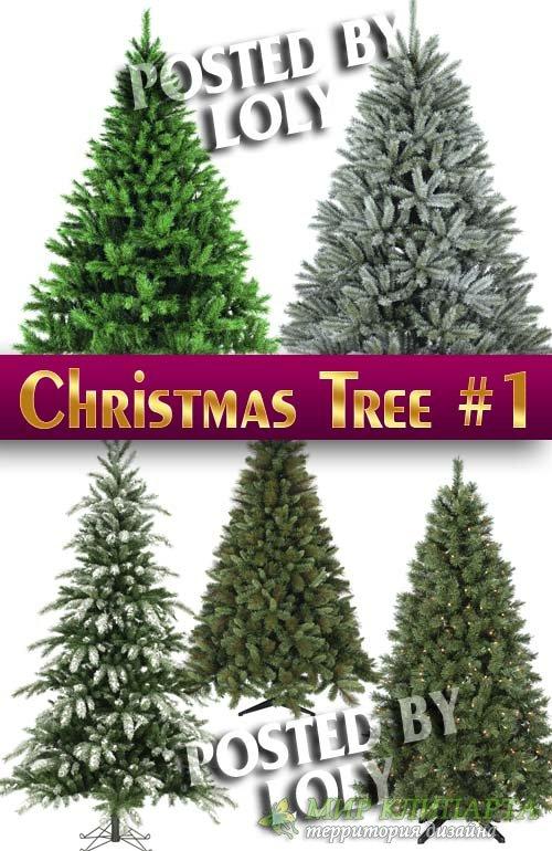 Новогодние елки 2014 #1 - Растровый клипарт