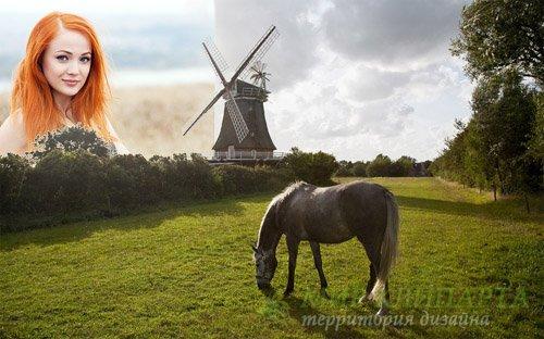 Рамка для фотографии - На красивой поляне пасется лошадка у мельницы