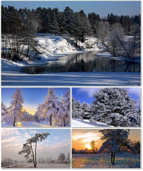 Подборка фото красивой зимней природы 1