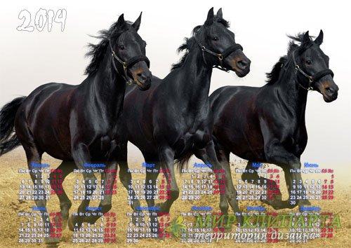 Календарь - 3 красивых лошади